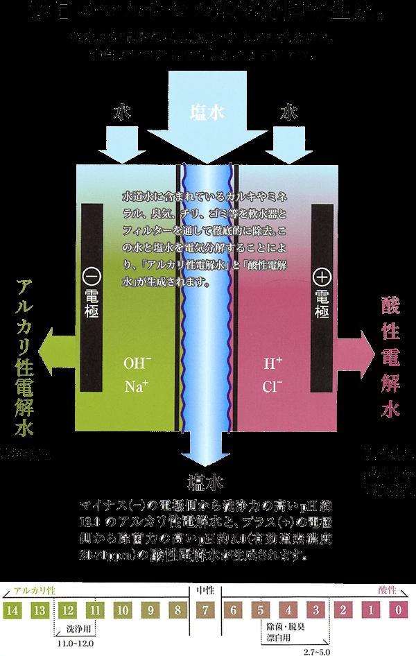 株式会社 アミューズ24 図式1
